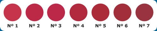 Imagem ilustrando os padrões de cor da carne